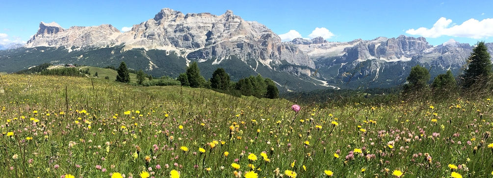 Piz dles Conturines from Pralongia, Val Badia, Dolomites, Italy