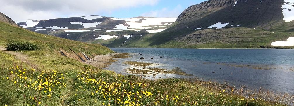 Hesteyrarfjordur shoreline near Hesteyri, Hornstrandir Reserve, Westfjords, Iceland