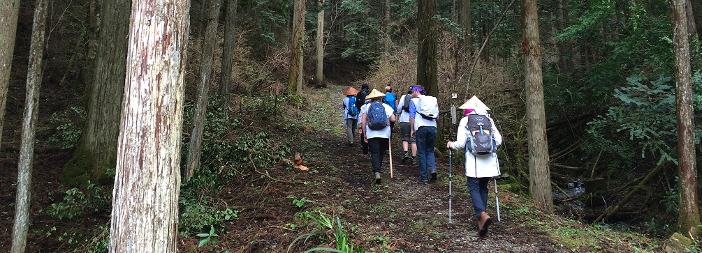Pilgrims on the trail to Iwayaji (Temple 45), Shikoku Pilgrimage, Japan